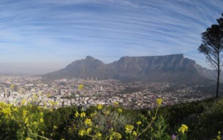 best-of-cape-town