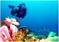 man scuba diving