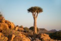 three namibia
