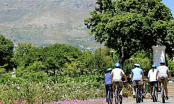 Cycling Tour Cape Town