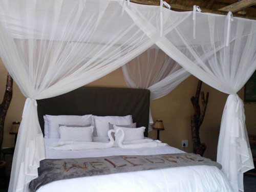 4 Day Luxury Tent and Kruger Experience