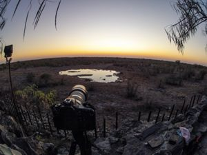 View of Halali Floodlit waterhole