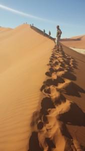 people climbing the dunes