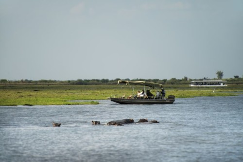 boat at Chobe national park
