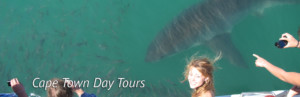 Day Tours - Cape Town