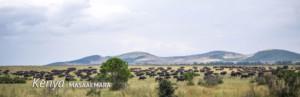 Maasi Mara