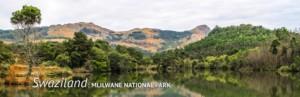 Swaziland Mlilwane
