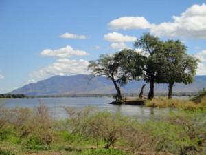 Zambia Luangwe