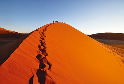11 day cape town to namibia safari