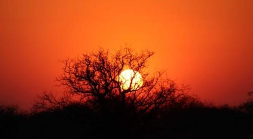 Sunset in Etosha