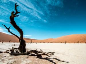 Namibian three