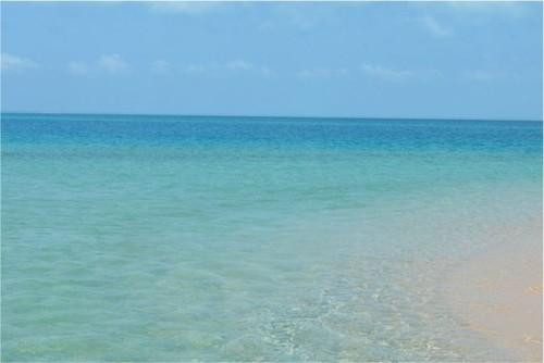 mozambique sea