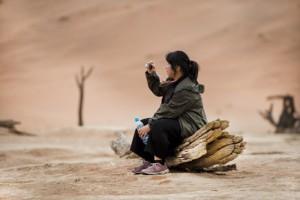 namib desert log