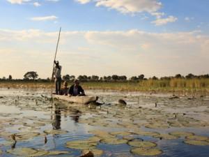 mokoro boat chobe river
