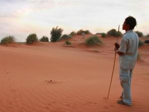 khomani san desert sanddunes