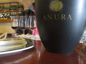 wine tasting anura stellenbosch