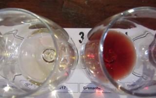 wine tasting flatlay