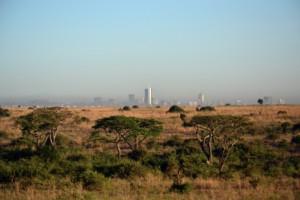 Nairobi National Park with skyline
