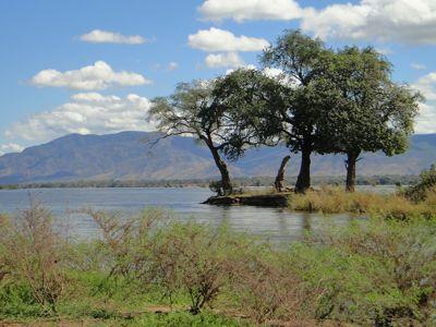 zambia national park