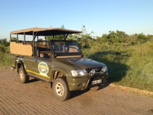 Game drive Kruger National Park