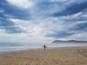 beach sedgefield