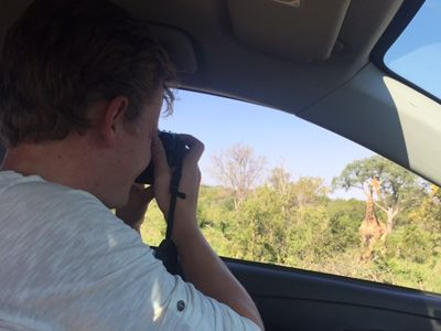 tourist taking picture of giraffe