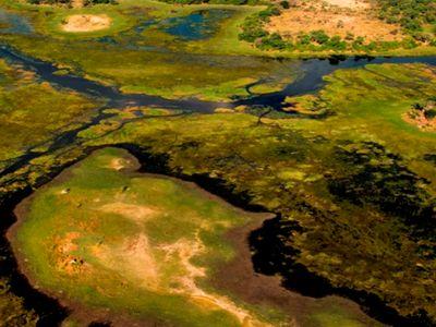Aerial Okavango Delta Botswana
