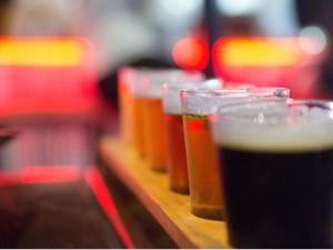 Knysna Beer Tasting Tour